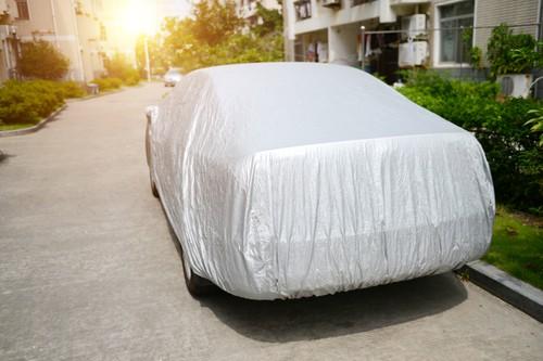 How to Keep My Car Bugs Free?